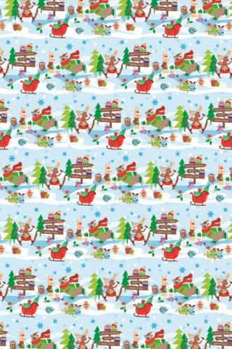 BP1 562 - Balící papír 70x100 dárkový vánoční