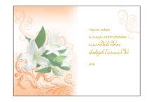 BOE 1620/70 - Blahopřání do obálky