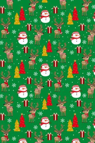 BP1 516 - Balící papír 70x100 dárkový vánoční