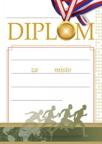 DIP 47 - Diplom A5 47